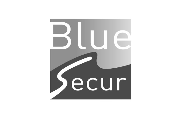 logo-bluesecur